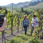 Wine Road: Wine Tourism Day Practice Run