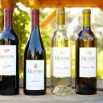 quivira bottles