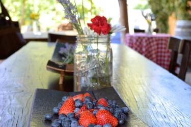 fruit-plate-wine-road-press-tour