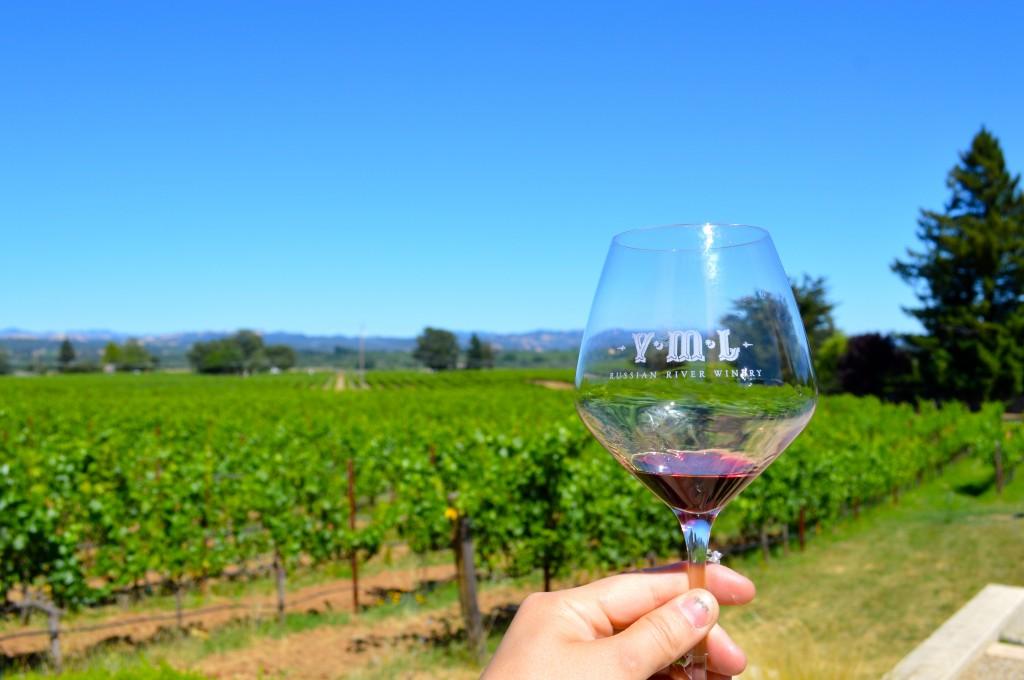 vml vineyards