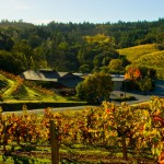 Wine Road Wineries Among the Best in America for 2015