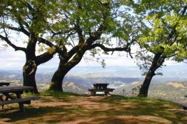 Picnic area with a panoramic view above Lake Sonoma in Dry Creek Valley.