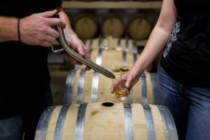 pouring cider into a glass from a barrel using a theif