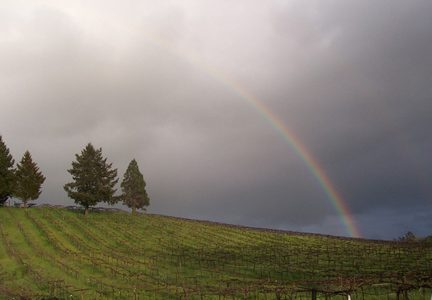 Rainbow over ACORN Wineries Alegria Vineyards