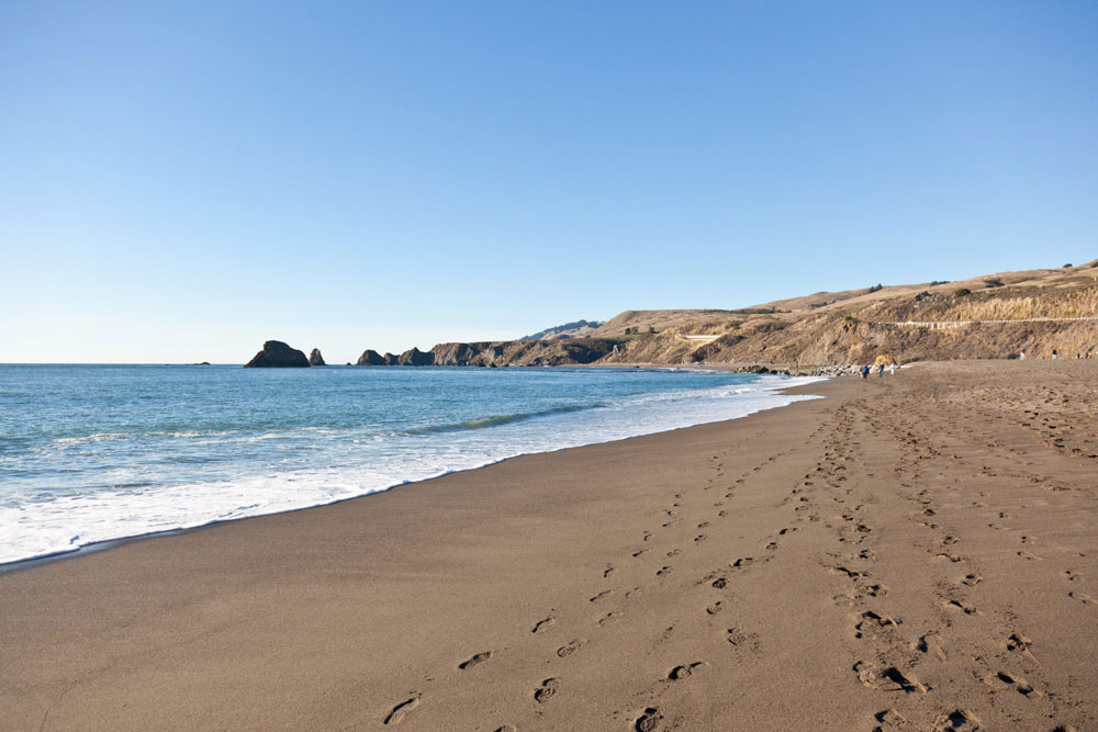 Sonoma coast beach