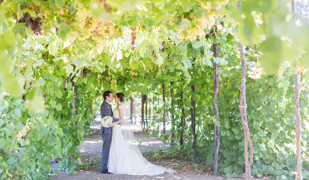 The wedding couple's magic moment at Trentadue Winery.