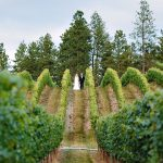 A Wine Country Wedding