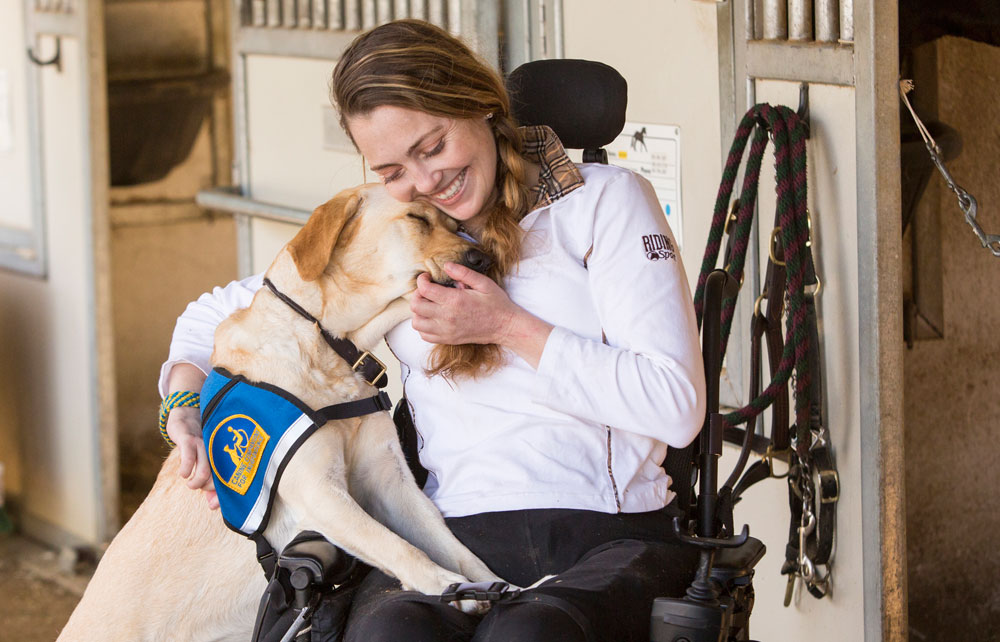 Young woman in a wheelchair cuddling with a Canine Companion yellow lab with a working cap on.