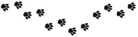 black paw prints against a white background