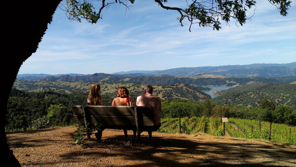 Enjoy this breathtaking view from Gustafson Family Vineyards' Dry Creek Valley tasting room.