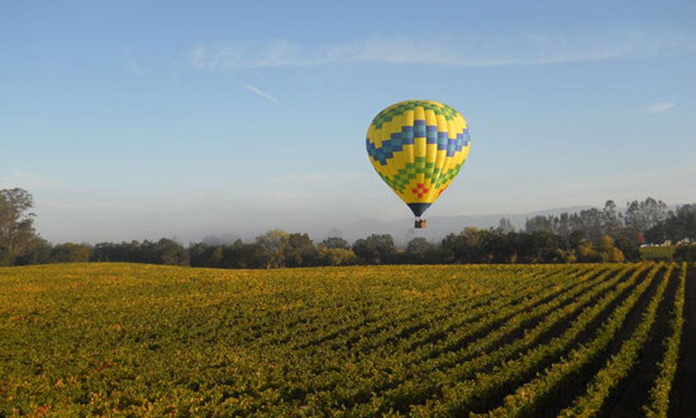 Enjoy a hot air balloon ride over the vineyard.