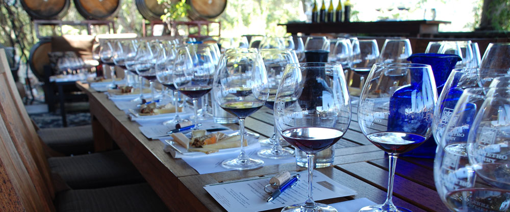 Enjoy a wine tasting and cheese pairing on the deck at Papapietro Perry.