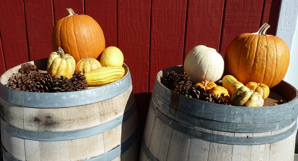 Enjoy the sights of fall decorations along the Wine Road.