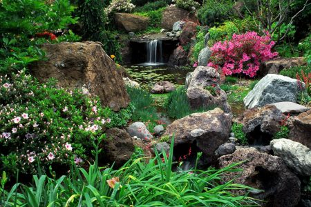 A waterfall and pond amid the gardens at Ferrari Carano Winery.