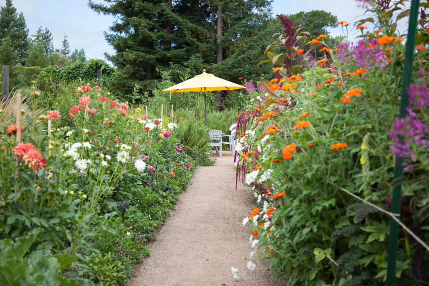 Gardens at Lynmar Winery
