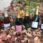 Sparkling Wine: Varietal of the Month