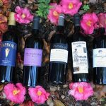 Barbera: Varietal of the Month