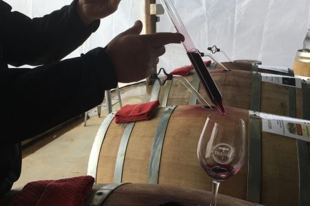 Winemaker removing wine from a barrel with a wine thief during Barrel Tasting.