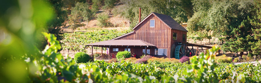 Photo of the Mill Creek Winery tasting room