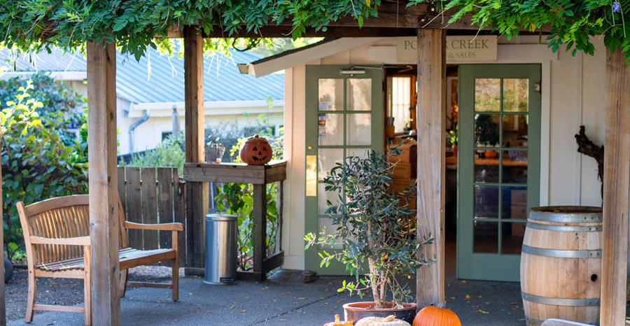 Porter Creek Vineyards Tasting Room